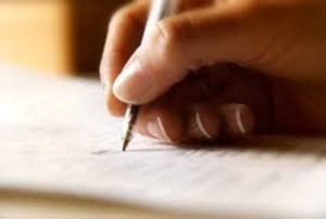 professional article writer services
