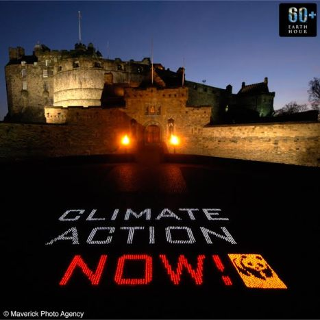 Angry Birds Friends to go offline for WWF Earth Hour