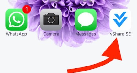 VShare app on iPhone