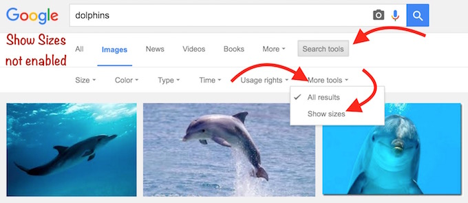 Image Search Show Size