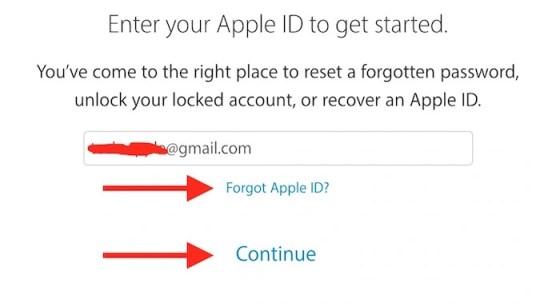 Reset Password or Apple ID
