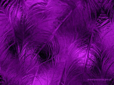 43 HD Purple Wallpaper/Background Images To Download For Free