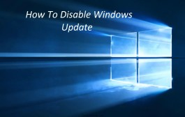 Disable Automatic Updates Windows 10