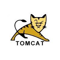 Apache Tomcat J2EE Server