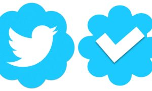 Anyone can apply and get the twitter blue batch verification