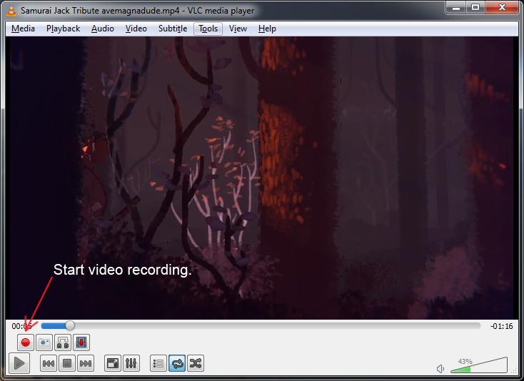 start-video-recording-vlc