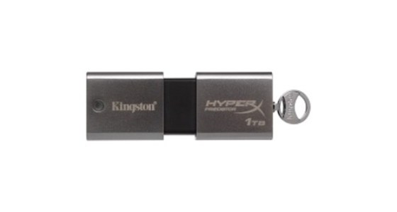 Kingston 1TB flash disk