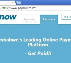 paynow-site