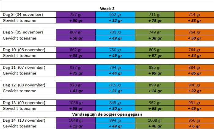 groei tabel WEEK 2