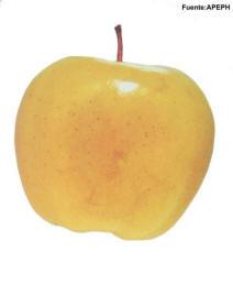 Escaldado fruta pepita Manzana Pera