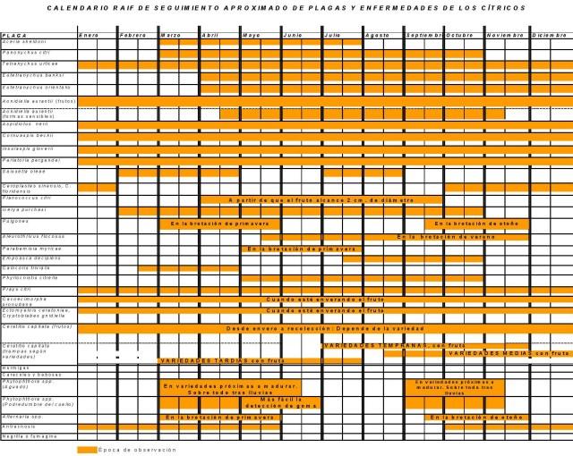 Calendario de seguimiento de plagas de citricos