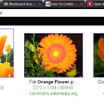 Search Large Creative Commons Images from the Chrome Omnibar