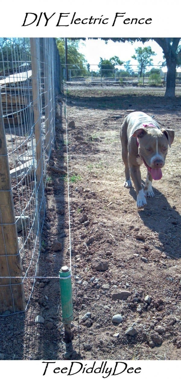 DIY Electric Fence / Hot Wire For Animals (Part 1) - TeeDiddlyDee