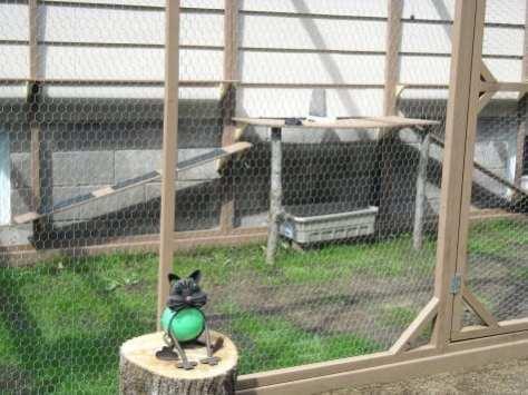 cat enclosure 003