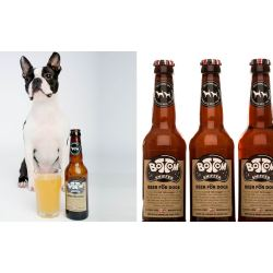 Small Crop Of Beer For Dogs