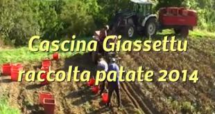 Cascina Giassettu – Raccolta patate 2014