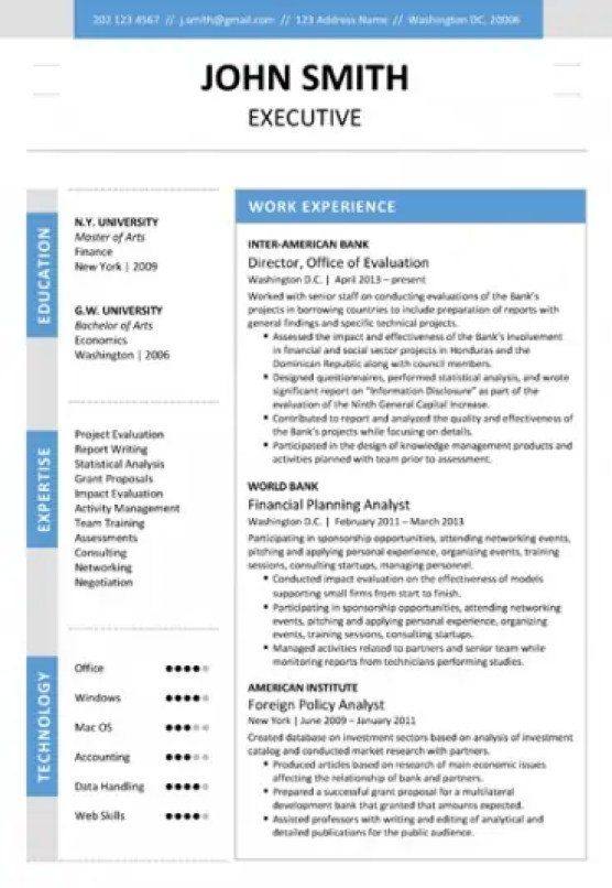 6 executive resume templates word website