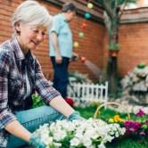 Ετοιμάστε τον ανοιξιάτικο κήπο σας