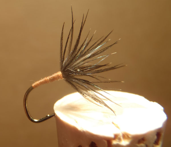 Starling Hackle Sakasa Kebari on a #2 Amano Hook