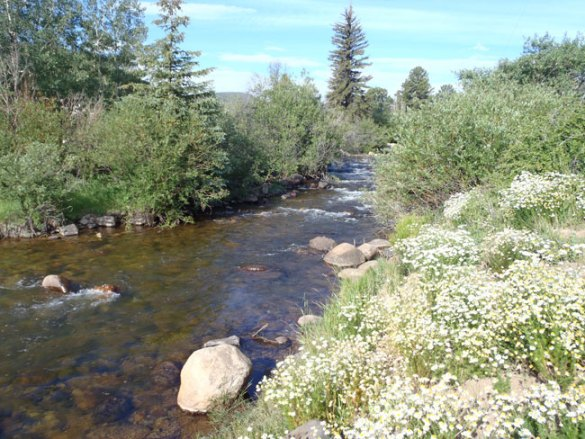 Boulder Creek