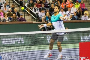 Verdasco fh volley
