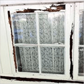 Picture shows termites have eaten window frames.