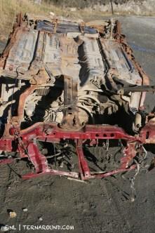 TdF - Ushuaia - road kill 12