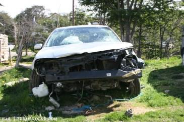 TdF - Ushuaia - road kill 18