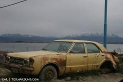 TdF - Ushuaia - road kill 2