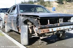 TdF - Ushuaia - road kill 9