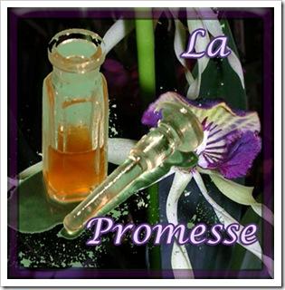 la promesse 1