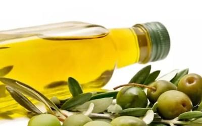 Un programma per la valorizzazione dell'olio d'oliva: GAL e operatori del settore si incontrano