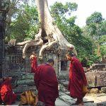 'Monk' hash mule nabbed at Phuket Airport
