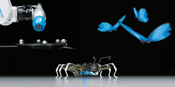 festo-and-butterfly-chameleon