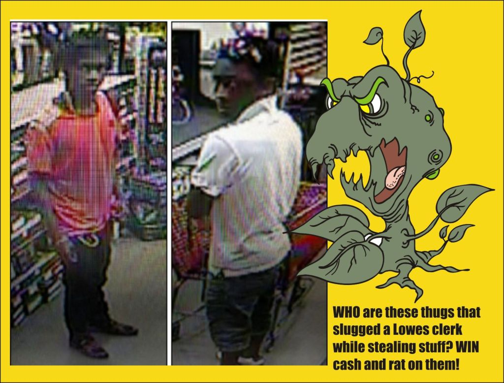 Thugs who slugged at Lowes wanted for theft and assault