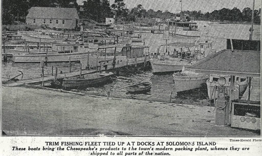 Capt. Joe Lore's fishing fleet at Solmon's Island Md. Times Herald Photo