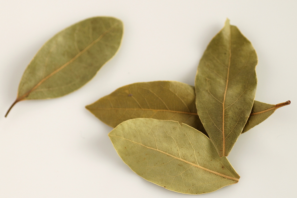 Why You Should Be Burning Bay Leaves At Home