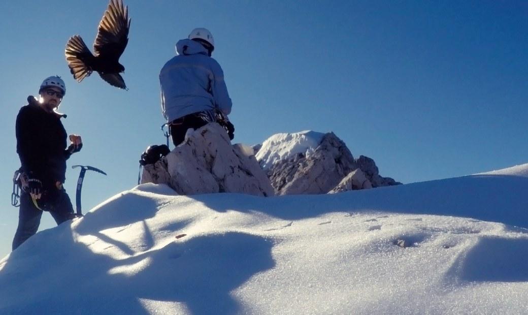 Winter Ascent Alpspitze 2015