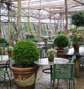tea-time_petersham-nurseries_richmond_23