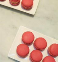masterclass_the-macaron_to-by-lipton_pierre-herme_1