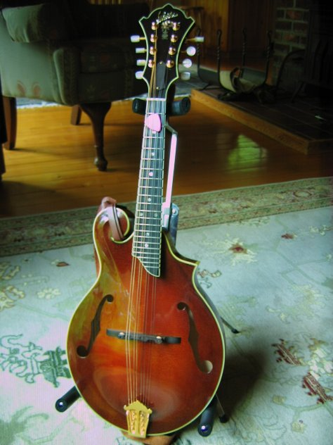 lebeda mandolin