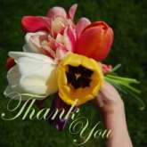 thank-you-220x220