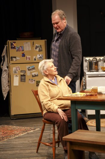 "Roberta Maxwell and Jay O. Sanders in Richard Nelson's ""Women of a Certain Age, Play 3 of ""The Gabriels: Election Year in the Life of One Family"" (Photo credit: Joan Marcus)"