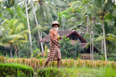 Destinations | Bali Private Tours – Experience the Real ...