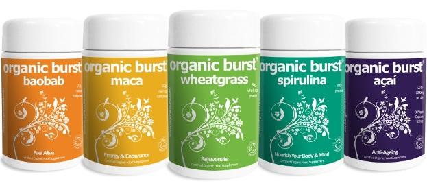 Organic Burst Group Show (1)