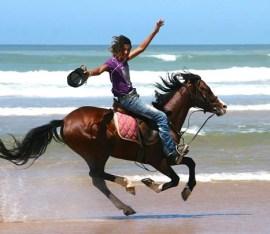 essa horse