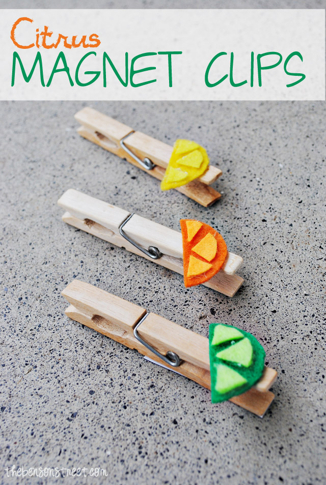 Citrus Magnet Clips at thebensonstreet.com