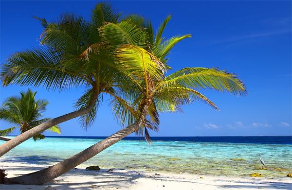 bahamas_beach-Beautiful