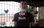 1080: Phuc Dat Bich