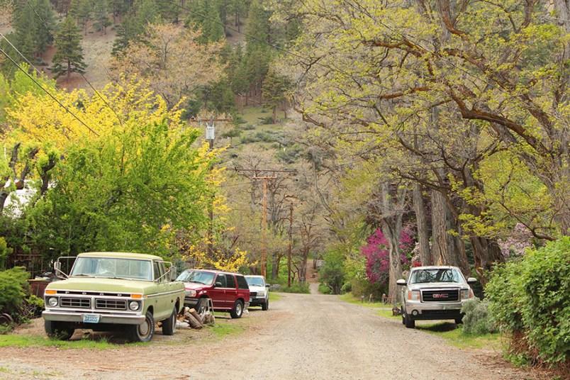Nature USA - Roadtrip USA